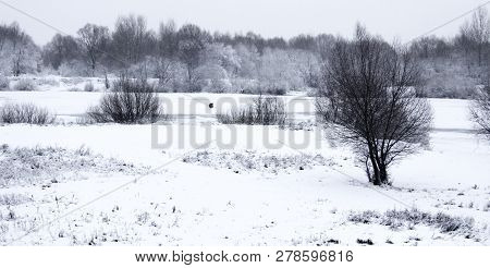 A Small Frozen Lake. Lake In The Snow. In The Middle Of The Lake Sits A Fisherman. Around The Lake A
