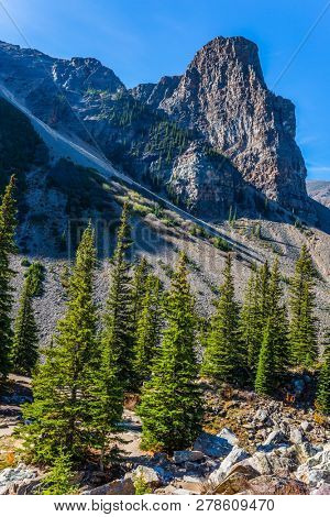 Picturesque stony shore and coniferous forest around Lake Moraine. Canadian Rockies, Province of Alberta. The concept of ecological, photographic and active tourism