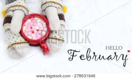 Woman Hands Holding Cup Of Hot Chocolate With Marshmallow Candies.  Knitted Mittens And Warm Cocoa D