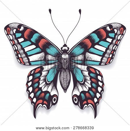 Beautiful Tattoo For Your Chest. Machaon Butterfly. Tropical Realistic Butterfly With Shadow. Female