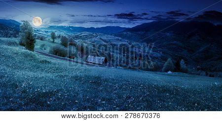 Dandelions On Rural Field In Mountains At Night In Full Moon Light. Beautiful Springtime Landscape.