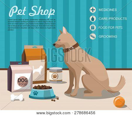 Pet Shop. Dog Sitting Next To Pet Accessories. Pet Shop. Vector Illustration