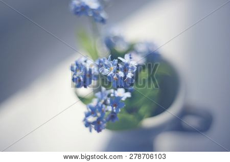 Blue Flowers Of A Forget-me-not Close Up In A Cup.