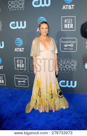 LOS ANGELES - JAN 13:  Annie Maude Starke at the Critics Choice Awards  at the Barker Hanger on January 13, 2019 in Santa Monica, CA