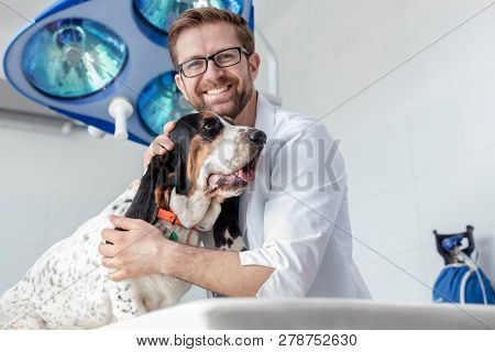 Portrait of smiling doctor with dog at veterinary clinic