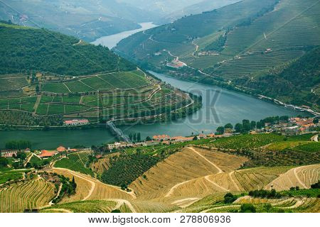 Top view of river, and the vineyards are on a hills, Douro Valley - Portugal.