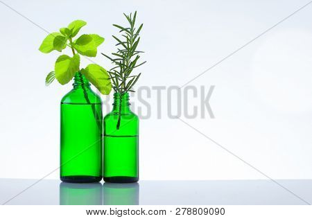 Cosmetic bottles with herbs on white background