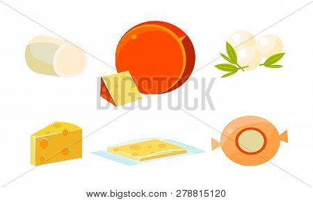 Delicious Fresh Cheese Assortment, Various Types Fresh Cheesy Products Vector Illustration