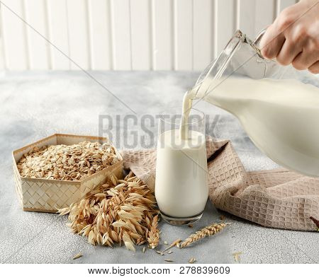 The Concept Of A Vegetarian Diet. Oat Milk In The Glass With Jug Of Oat Milk And Oat And Oat Ears. L