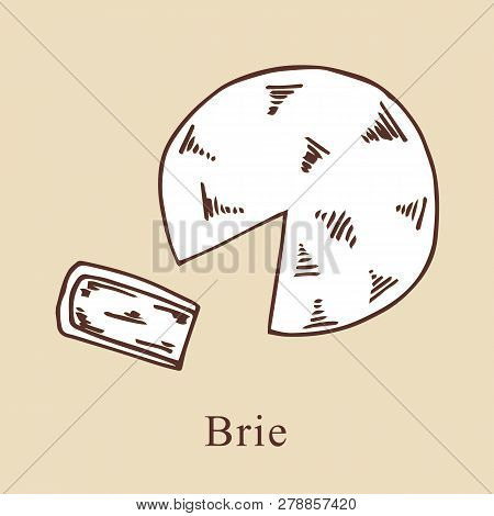 Brie Vector Illustration In Cartoon Style. Perfect For Menu, Card, Textile Design