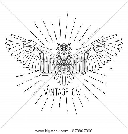 Owl. Eagle Owl Outline Emblem In Hipster Style With Arrow And Beams. Birds. Black White Hand Drawn D