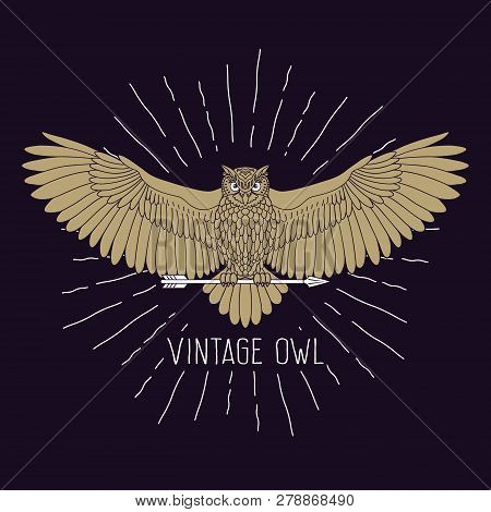 Owl. Eagle Owl Outline Emblem In Hipster Style With Arrow And Beams