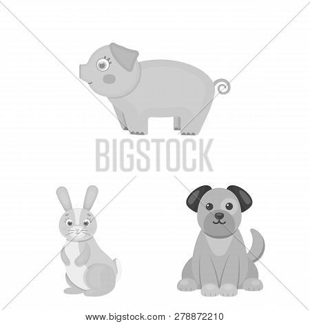 Isolated Object Of Animal And Habitat Logo. Set Of Animal And Farm Stock Symbol For Web.