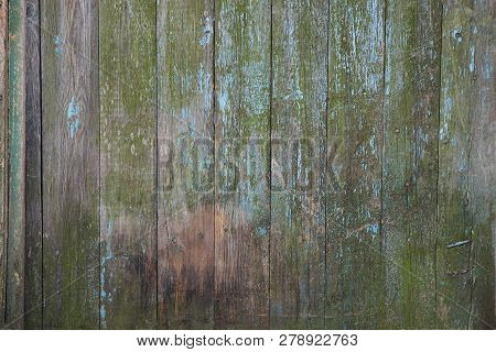 Gray Green Wooden Texture Of A Series Of Thin Boards In The Wall Of The Fence