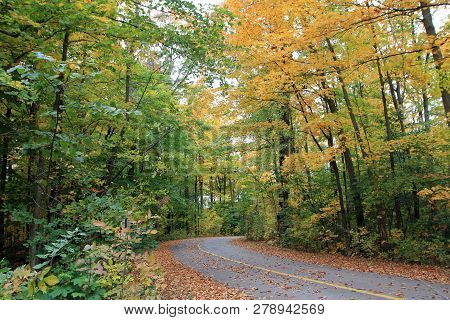 Autumn Landscape With Road In The Forest