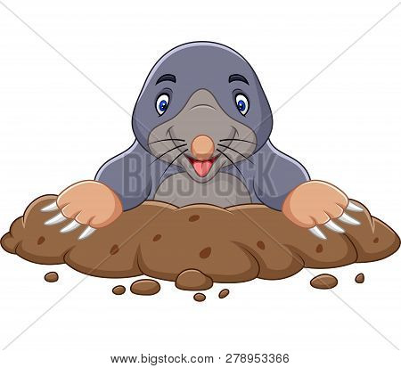Vector Illustration Of Cartoon Mole Come Out Of The Hole