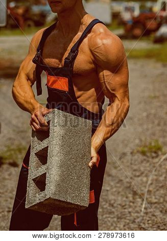 Power Concept. Brick In Fit Arms With Biceps And Triceps Muscle, Power. Muscular Power. Real Power L