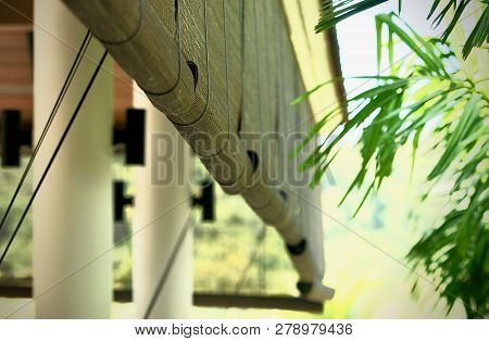 Bamboo Blinds Asian Traditional Home Decoration. Sunlight Coming Through Bamboo Blinds By The Window