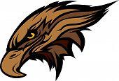 Hawk or Falcon Head Vector Graphic Mascot Image poster