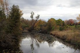 Autumn Landscape With River In The Forest