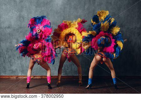 Three Woman In Brazilian Samba Carnival Costume With Colorful Feathers Plumage