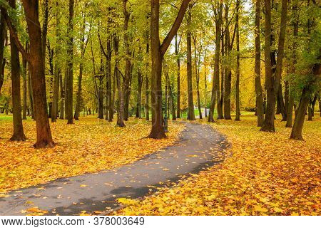 Fall landscape, bright fall trees and yellow fallen leaves. Fall alley in the city fall October park, fall colorful nature, fall landscape. Colorful fall city park, fall background