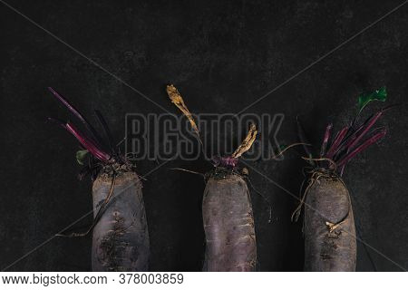 Three Organic Beets On A Dark Background. Organic Eco Food. Healthy Diet. Freshly Picked Vegetables.