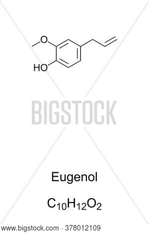 Eugenol, Chemical Structure And Formula. Clove Odor. Extracted Mainly From Clove Bud Oil And Clove L