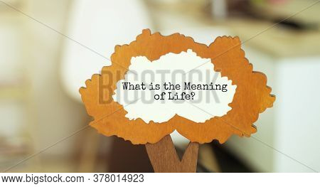 The Text What Is The Meaning Of Life In The Wooden Tree Figure
