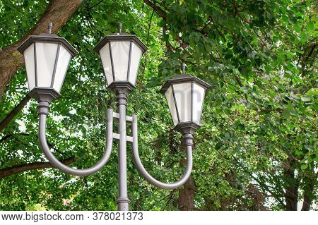 Close-up Of The Street Lights And Trees In The Alley In The City Park. Concept Of Urban Street Light