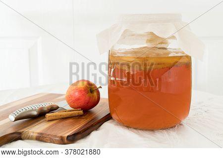 Ingredients To Make Apple And Cinnamon Kombucha Drink