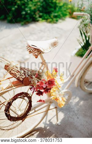 Close-up Of Bicycle Saddle With Colorful Flowers And Log On Trunk