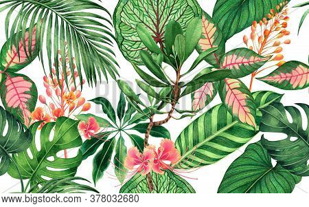 Watercolor Painting Colorful Tropical Palm Leaf,green Leaves Seamless Pattern Background.watercolor