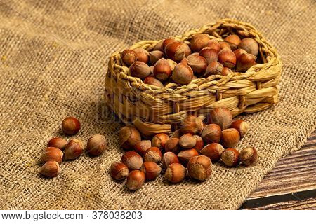 Hazelnuts In A Wicker Basket And Hazelnuts Scattered On A Background Of Homespun Fabric With A Rough