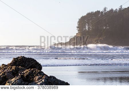 Beautiful View Form Hunters Cove In The Southern Oregon Coast With Jagged Rocks And Evergreen Trees
