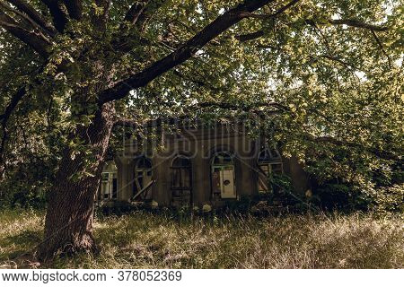 Abandoned Manor In An Old Forest. Broken Horses Through Dry Tree Branches.