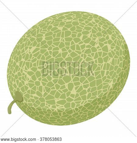 Whole Garden Melon Icon. Isometric Of Whole Garden Melon Vector Icon For Web Design Isolated On Whit
