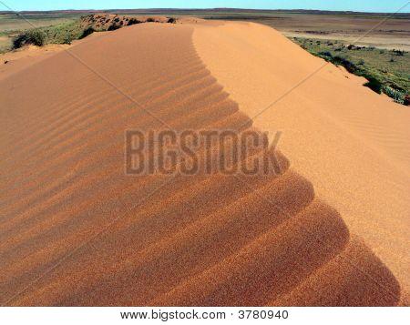 Ridge Of Dune