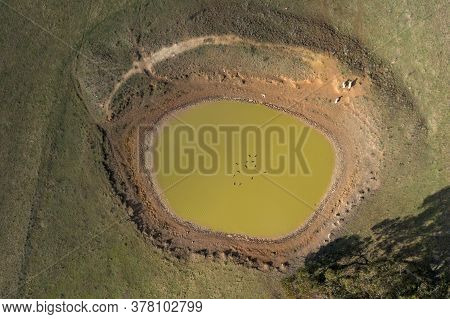 A Dry Livestock Watering Hole In The Australian Outback Due To The Severe Drought