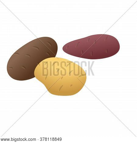 Fresh Potato Icon. Cartoon Of Fresh Potato Vector Icon For Web Design Isolated On White Background