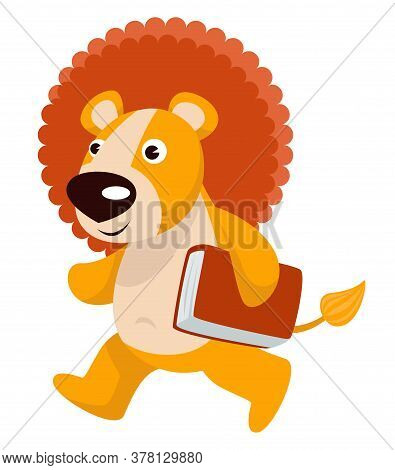 Baby Lion Animal Walking With Book Or Textbook