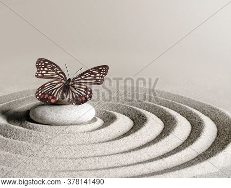 Japanese Zen Garden Meditation Stone Concentration And Relaxation Sand And Rock With Butterfly For H