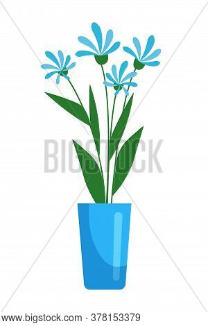Blue Blooming Spring Flower With Green Leaf In Ceramic Pot. Floral Composition With Bud On Stem. Flo