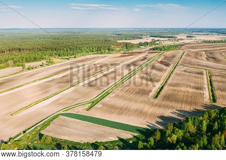 Aerial View Spring Empty Field With Windbreaks Landscape. Top View Of Field And Forest Belt. Drone V