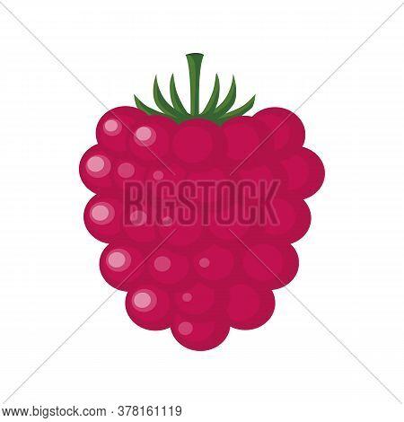 Fresh Ripe Raspberry On A White Background. Tasty Sweet Fruit Icon. Dessert. Red Raspberries Isolate
