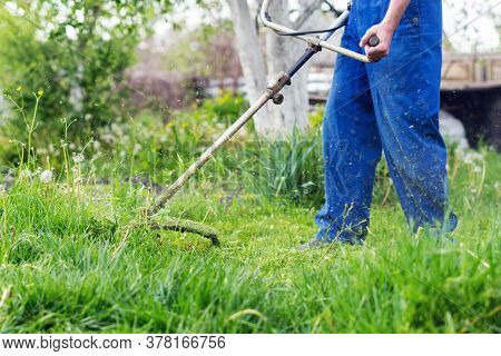 The Gardener Mows The Grass With A Trimmer In The Spring Garden.