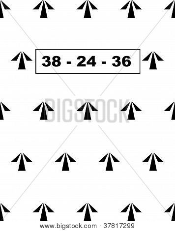 Prison Arrows 38-24-36