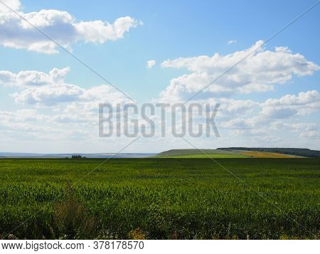 Wheat Green Field And Beautiful Countryside Scener