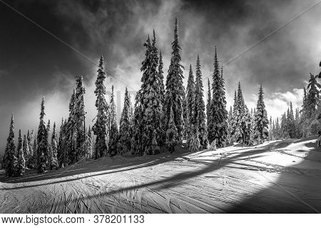 Black And White Photo Of The Sun Setting Behind The Trees On The Ski Slopes Of Sun Peaks Resort In T