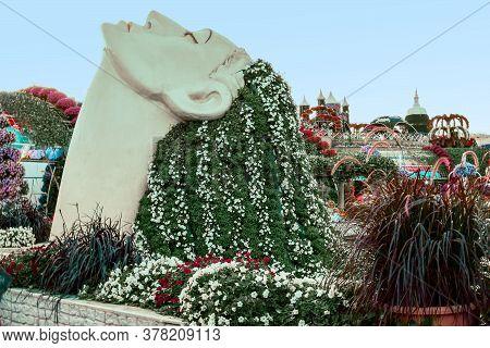 A Woman's Head With Loose Hair. A Miracle Is A Garden. Dubai Land District, Dubai, Al Barsha South,